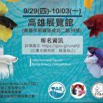 ベタの世界大会が開催中!日本でもコンテストは沢山!