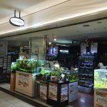 東京のアクアショップ「アクアフォレスト」:新宿駅から地下道で行ける人気店