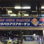 東京のアクアショップ「パウパウアクアガーデン銀座」都心最大!